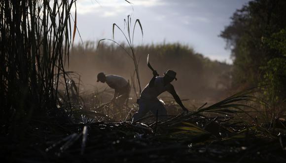 Para importar azúcar, insumos o piezas Cuba debe sortear la persecución financiera por el embargo, indicó el vicepresidente primero del grupo estatal Azcuba, José Carlos Santos. (AP Photo/Esteban Felix)