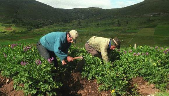 El proyecto de inversión en Moquegua incrementará el PBI agrícola regional, así como la incorporación a la actividad agrícola de 3,500 hectáreas de tierras.(Foto: Difusión)