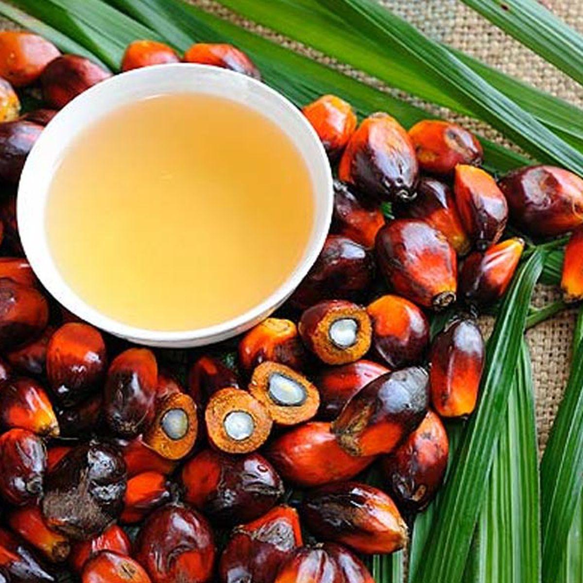 aceite de palma precio por tonelada