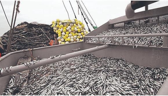 Pesca ilegal. (Foto: Difusión)
