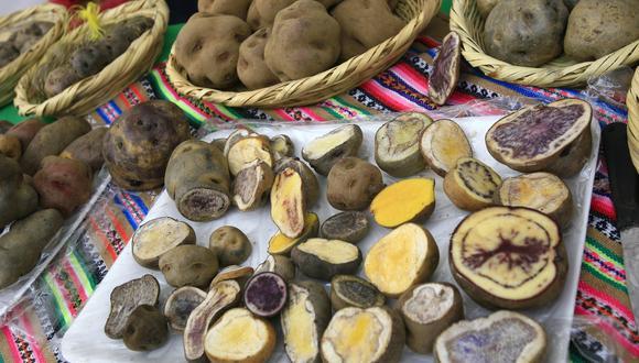 Demandan papas de colores en mercado interno y externo. (Foto: GEC)