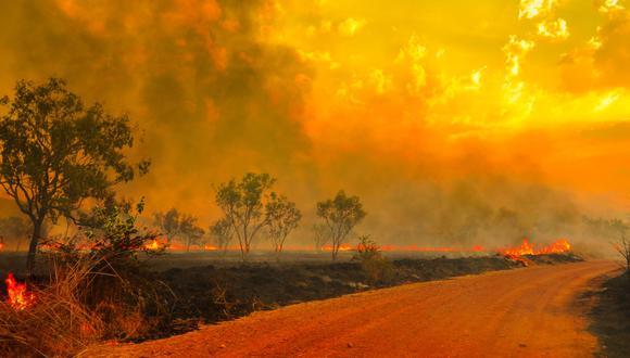 Incendios en Australia. (Foto: Difusión)