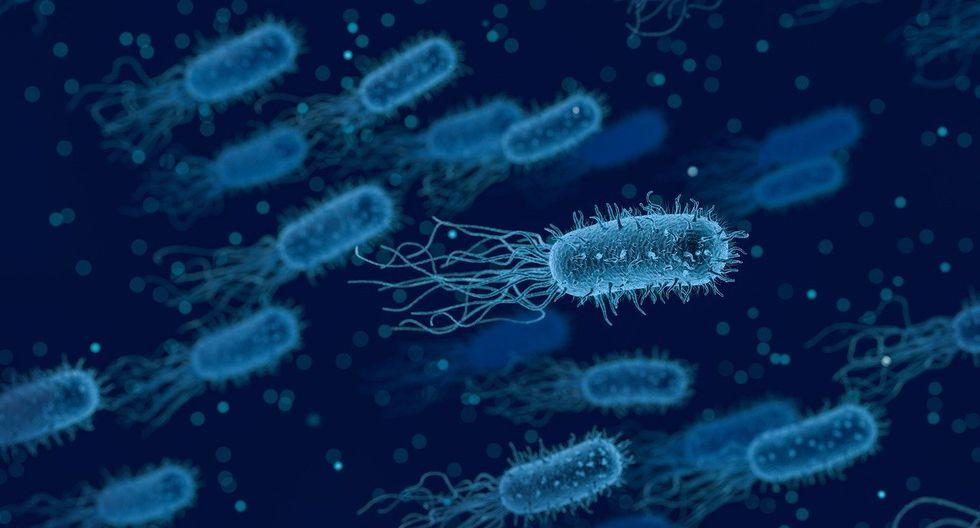 Las bacterias pueden volverse resistentes cuando los pacientes utilizan antibióticos que no necesitan. (Foto: AFP)
