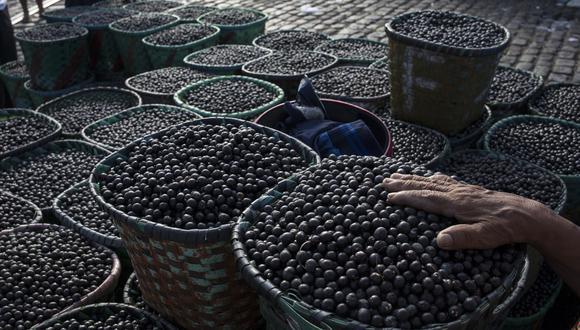 Después de autorizado el ingreso del arándano, Taiwán trabajará con Perú para simplificar los procedimientos para la entrada de productos orgánicos, la palta y granada peruanos. (Foto: AP)