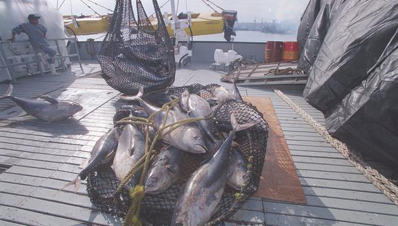 Produce y el MEF evalúan normas para impulsar la industria atunera. (Foto: GEC)