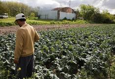 Plataforma agrícola en línea Orbia planea expansión latinoamericana tras acuerdo con Bunge en Brasil