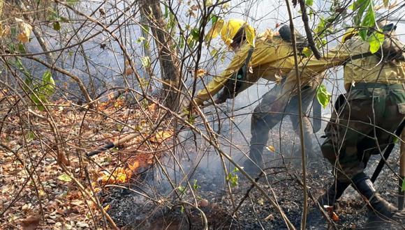 El incendio afecta gran parte de la Amazonía boliviana en Santa Cruz. (Foto: AFP)