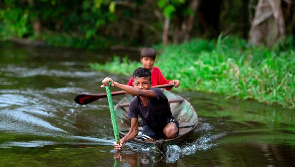 Amazonas. (Foto: AFP).