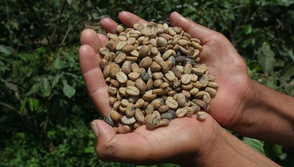 Perú es el segundo productor y exportador mundial de café orgánico.