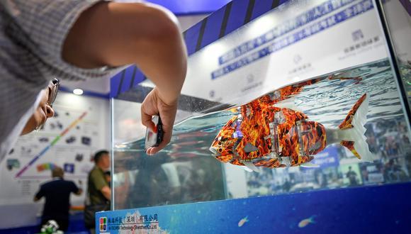 Un visitador usa su celular para tomarle una fotografía a un robot pescado en el 2019 World Robot Conference en Beijing. (Foto: AFP).