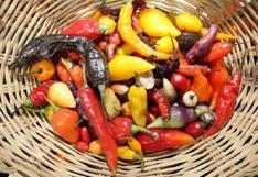Perú celebrará el día del ají mostrando las 350 variedades que se cultivan a nivel nacional