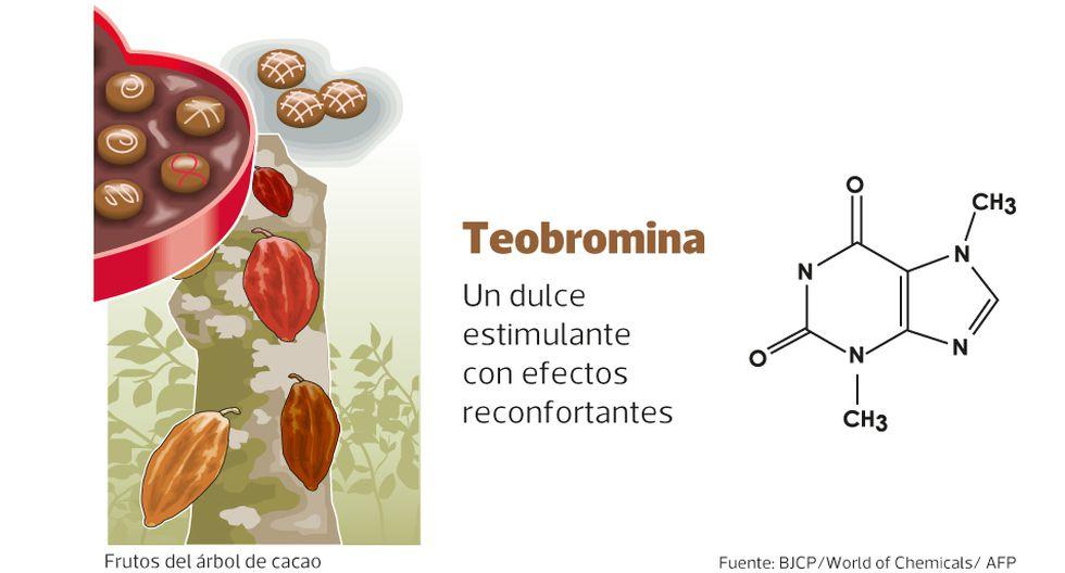 Foto 1 | La teobromina es un alcaloide del grupo de las metil-xantinas. El porcentaje aproximado de teobromina es de hasta 1.5 % dependiendo del tipo de chocolate, siendo el chocolate negro en el que más predomina.