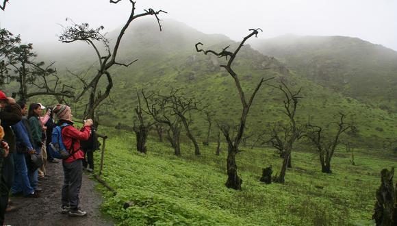 Turistas en la Reserva Nacional Pacaya Samiria, en Loreto. (Foto: USI)
