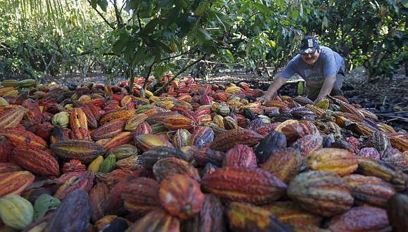 El nivel de cadmio en el cacao es más elevado en la sierra de Piura y en algunas zonas específicas de la región San Martín, según el Ministerio de la Producción. (Foto: El Comercio)