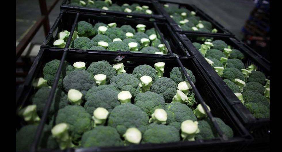 Fotos 9 | Brócoli. Potencia la memoria y ayuda a asegurar una correcta salud cerebral.