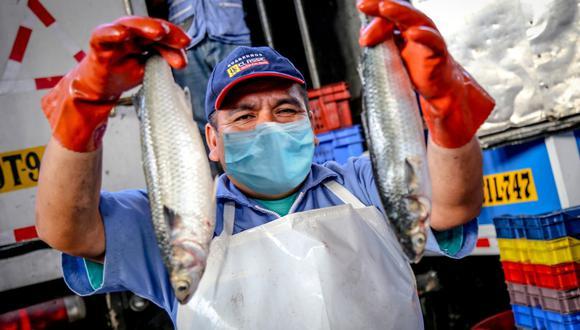 Las infraestructuras pesqueras deben operar con el personal mínimo indispensable. (Foto: Produce)