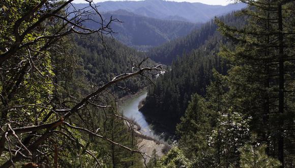 El proyecto en el segundo río más largo en California estaría a la vanguardia de una tendencia hacia la demolición de diques en Estados Unidos, los cuales han envejecido y cada vez son menos viables. (Foto: AP Foto/Gillian Flaccus)