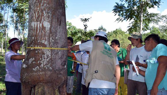 El Organismo de Supervisión de los Recursos Forestales y de Fauna Silvestre previene y sanciona las infracciones cometidas en contra del patrimonio natural del país.