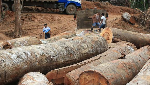 Madereros. El Comité de Madera de ADEX rechazó el pedido de legisladores norteamericanos para que el Perú modifique el control forestal.
