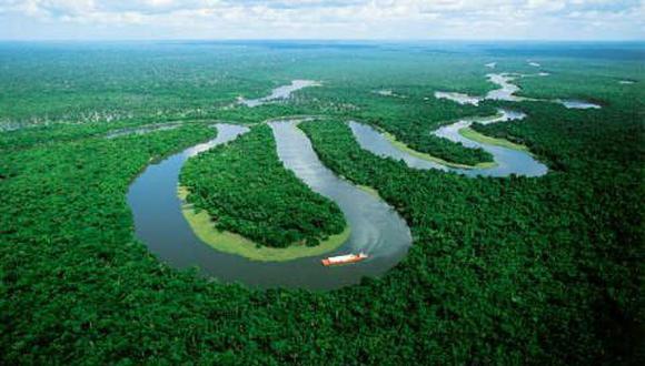 """""""Gran parte de nuestra lluvia viene de la Amazonía. Si deforestamos, estamos reduciendo la lluvia. Yo suelo decir que estamos sembrando la sequía"""", expresó Gatti."""