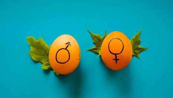 """""""La Nueva Empresa"""" sobre educación sexual integral"""