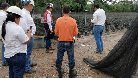 San Martín: Sunafil paraliza trabajos en campo de pampa aceitera, donde empresa ponía en riesgo biológico y físico de 191 trabajadores (Foto: Sunafil)