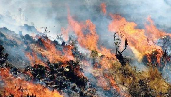 Los trabajos de control y extinción del incendio se centran ahora en evitar que el viento y las condiciones climatológicas extiendan las llamas hasta las comunidades que viven en la parte alta de Yanahuara. (Imagen referencial).