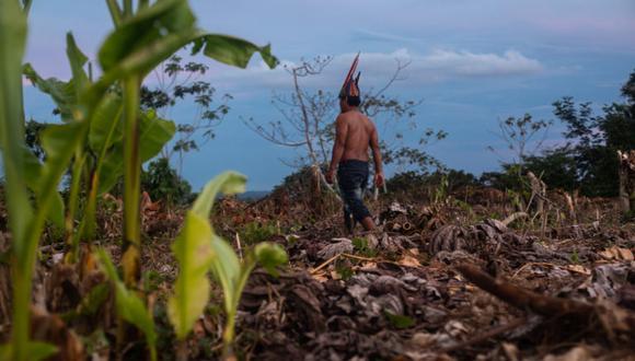 Los indígenas en contacto inicial son aquellas poblaciones nativas que han decidido mantener relaciones estables con el resto de la sociedad, lo que supone un proceso donde ellos marcan el tiempo y la forma de las interacciones. (Foto: Difusión)