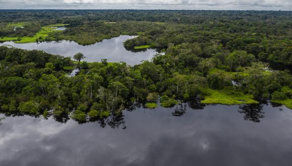 La conservación de áreas naturales protegidas fue un proyecto verde respaldado por el MEF en el 2020. (Foto: Diego Pérez / WWF Perú)