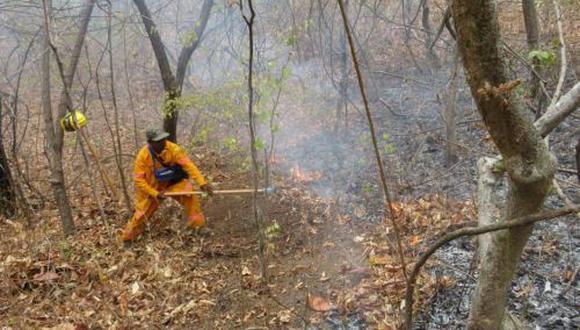 """Serfor señaló que sí hay en el país """"focos de calor"""", que son quemas de rastrojos (restos de tallos y hojas secas tras la cosecha) y de pastizales naturales que realizan los agricultores. (Foto: Andina)"""