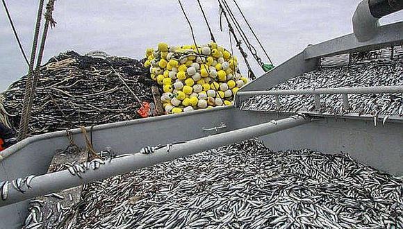 En el 2020 solo el 23% de la pesca se destinó al consumo humano; y el consumo per cápita de pescado es de 25.5 kg. (Foto: GEC)