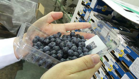 Los arándanos orgánicos se venden en promedio a US$ 3 más por kg que los convencionales.