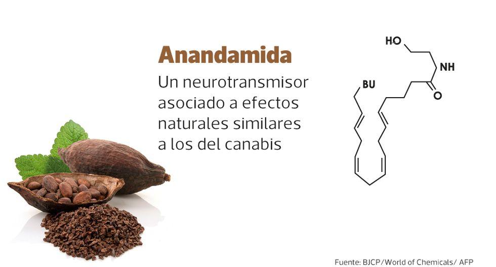 Foto 2 | La anandamida es un neurotransmisor que influye en los sistemas fisiológicos como el dolor, la regulación del apetito, el placer y la recompensa.