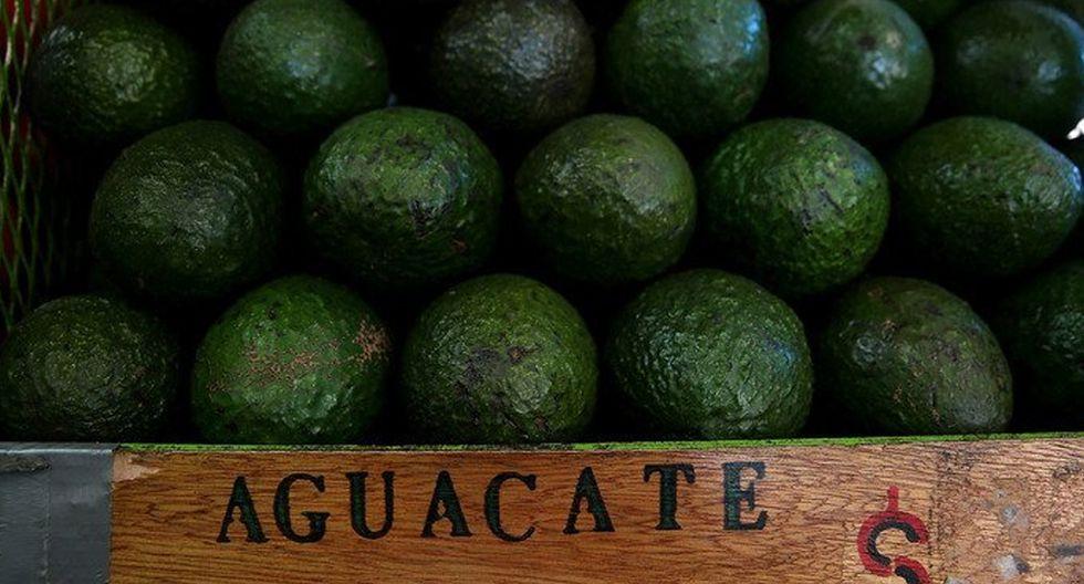 FOTO 3 | Aguacate. Uno de los aliados en contra del envejecimiento y el deterioro rápido de nuestra salud, gracias a sus propiedades como antioxidante. Su clave para proteger al cerebro es que es rico en omega 3.