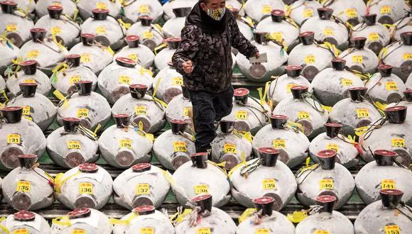 El atún más caro este año lo compraron, conjuntamente, el célebre mayorista Yukitaka Yamaguchi, invitado habitual de los platós de televisión, que suministra a los mejores restaurantes de sushi, y una importante empresa de alimentos. (Foto: AFP)