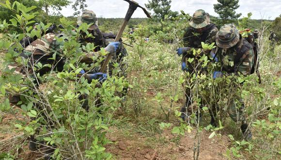 Mirtha Vásquez dijo que se planea erradicar 18 mil hectáreas de coca para fines ilícitos en el 2022. (Foto: AFP)