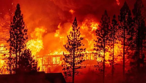 Solo en California, uno de los estados más golpeados por los incendios, 6,500 edificaciones resultaron destruidas por las llamas desde agosto. (Foto: AFP)