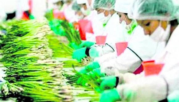 Entre algunas alternativas que el sector agroexportador estudió se encuentra la aplicación de radiación antes que se realicen los envíos