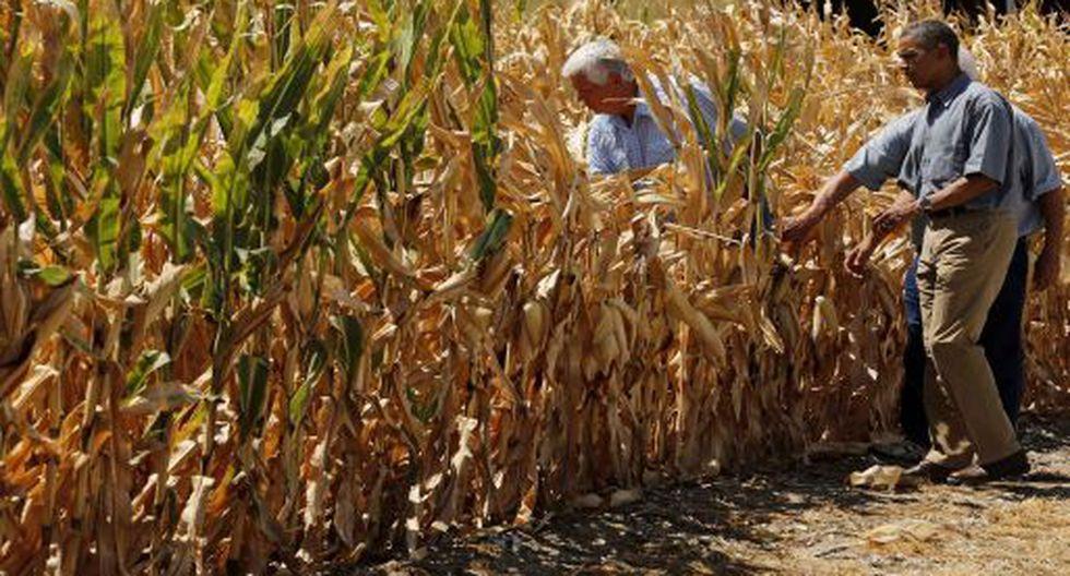 Los agricultores son un pilar de apoyo político de Doanld Trump, que buscará un segundo mandato en noviembre.
