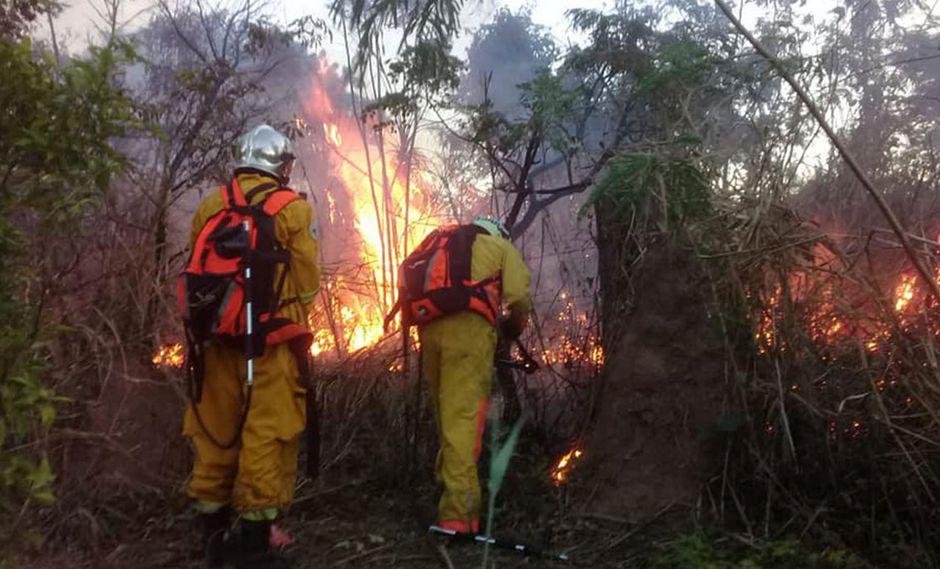"""El fuego se ha cebado cerca de algunas comunidades y en los bosques o reservas forestales, donde las llamas son """"interminables"""". (Foto: Facebook Bomberos Voluntarios UUBR)"""