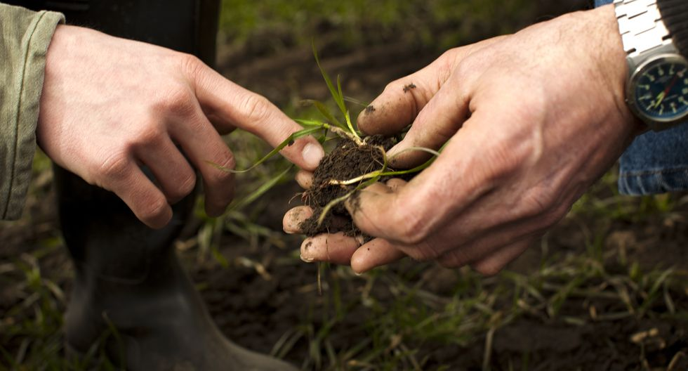 Carbon footprint, Climate branding, CO2 hands, soil, advice