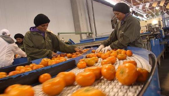 Las mandarinas son el principal cítricos que exporta el Perú. (Foto: difusión)