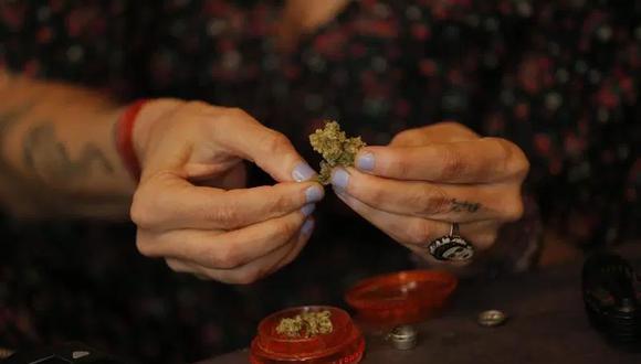 El uso terapéutico del cannabis está legalizado en Perú desde el 2017, pero a la práctica su distribución está restringida a los laboratorios, todos carentes de licencia de siembra, y su venta limitada a apenas tres farmacias de Lima. (Foto: EFE/Luis Angel Gonzales)