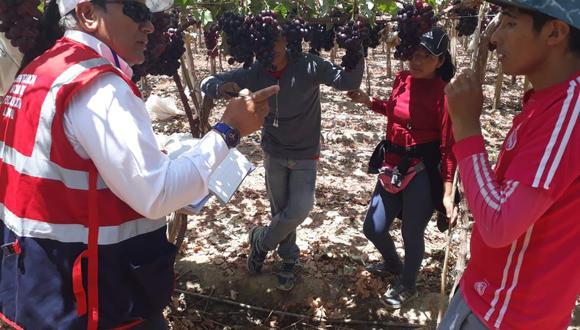 Los operativos de formalización fueron realizados por el equipo de inspectores denominado Perú Formal Rural. (Foto: Difusión)