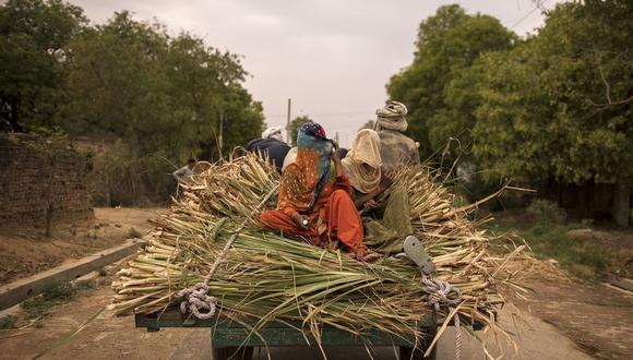 Los problemas de salud mental y física afectaron la capacidad de las mujeres para trabajar en India, y el impacto fue más severo de lo que se sintió a nivel mundial.