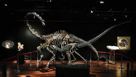 Estos esqueletos de dinosaurios fueron subastados por US$ 3.52 millones