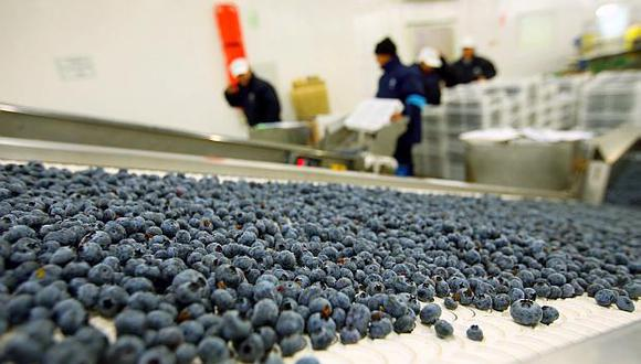 Agroexportadores exhortan al Congreso no derogar actual marco legislativo del sector. (Foto: GEC)