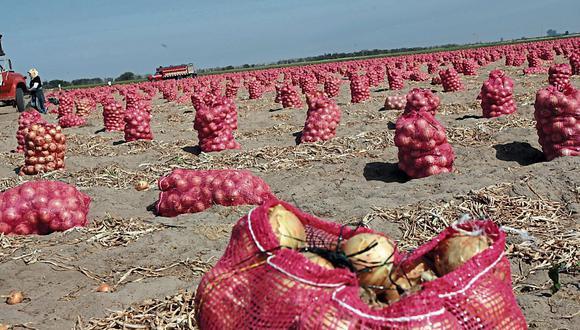 Agroexporrtación (Foto: GEC)
