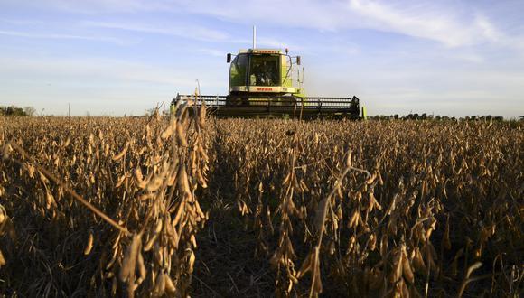 Mientras una sequía alimentada por La Niña ha provocado estragos en la actual cosecha de trigo de Argentina, las lluvias deberían llegar en el cuarto trimestre y continuar hasta el primer trimestre del 2021. (Bloomberg)